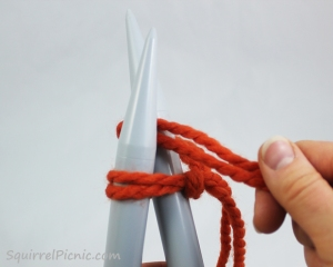 Squirrel Picnic Knit Scarf 6