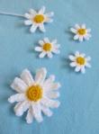 daisy (594x800)