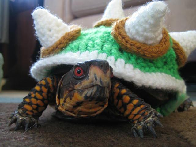 Make It! Challenge #5: Crochet Bowser Sweater for a Turtle Squirrel Picnic