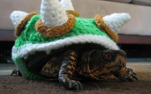 One Mean Turtle