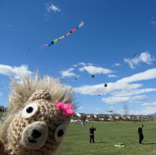 Podge Says Kite Festival