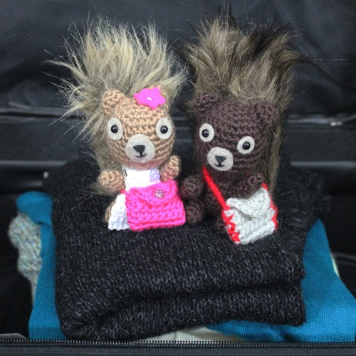 Hodge and Podge Go to New York