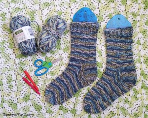 January 2016 Crochet Socks_Simple Simon