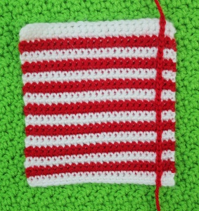 Picnic Blanket for Your Squirrel Friend 1