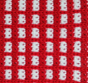 Picnic Blanket for Your Squirrel Friend 2